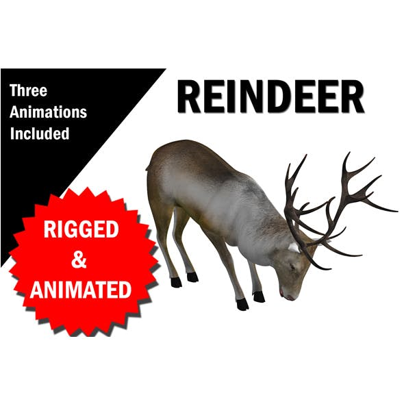Reindeer RIgged and Animated - 3DOcean Item for Sale