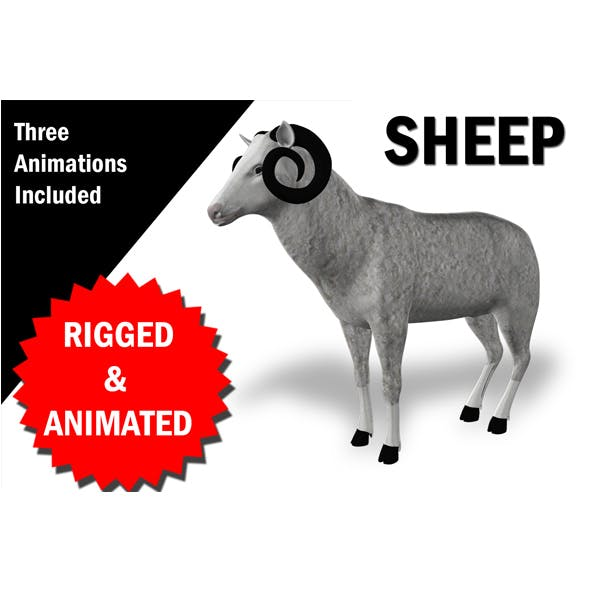 Sheep Rigged and Animated - 3DOcean Item for Sale
