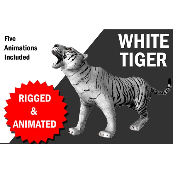 White Tiger with animation - 3DOcean Item for Sale