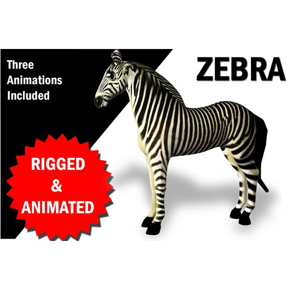 Zebra Rigged and Animated - 3DOcean Item for Sale