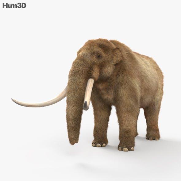 Mastodon HD - 3DOcean Item for Sale