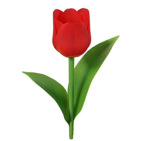 Tulip - 3DOcean Item for Sale