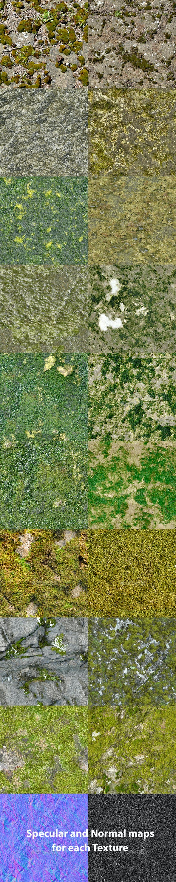 Set of 18 Seamless Mossy Surfaces Textures Volume 1 - 3DOcean Item for Sale