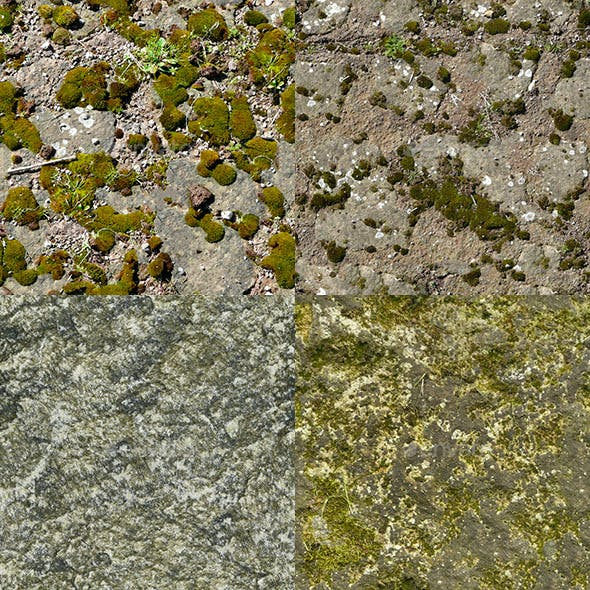 Set of 18 Seamless Mossy Surfaces Textures Volume 1