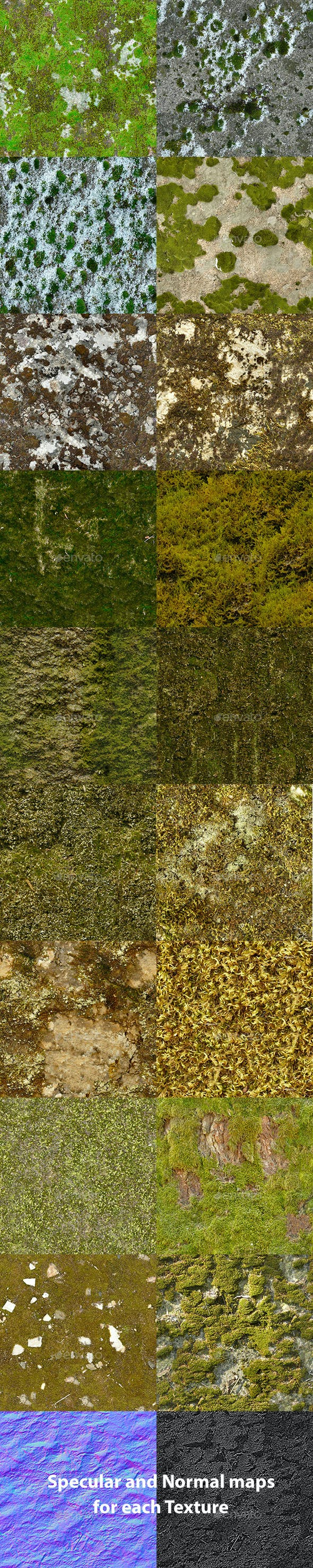 Set of 18 Seamless Mossy Surfaces Textures Volume 2 - 3DOcean Item for Sale