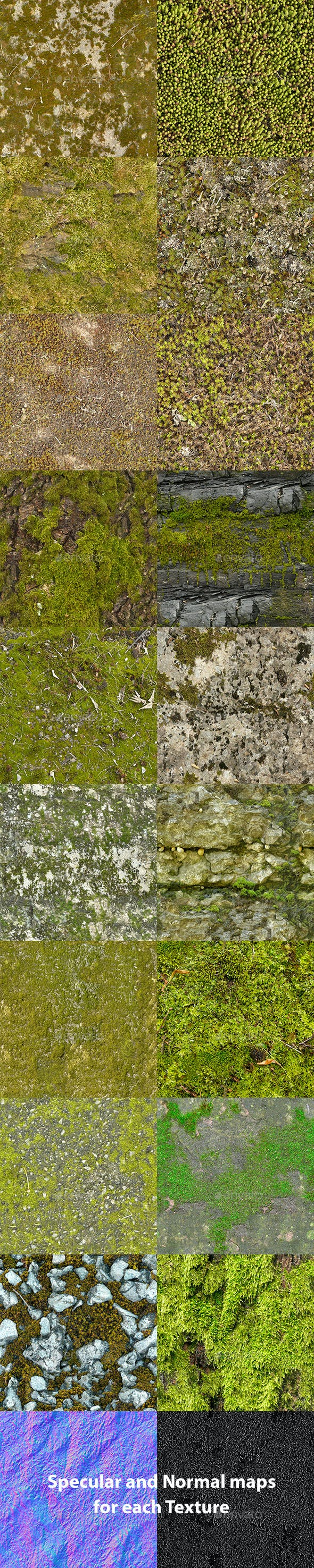 Set of 18 Seamless Mossy Surfaces Textures Volume 3 - 3DOcean Item for Sale