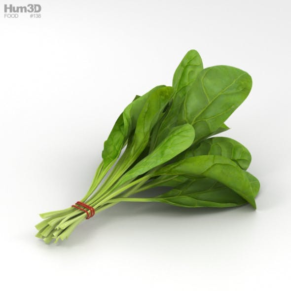 Spinach - 3DOcean Item for Sale