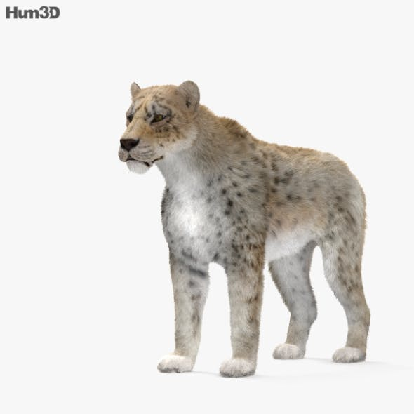 Homotherium HD - 3DOcean Item for Sale