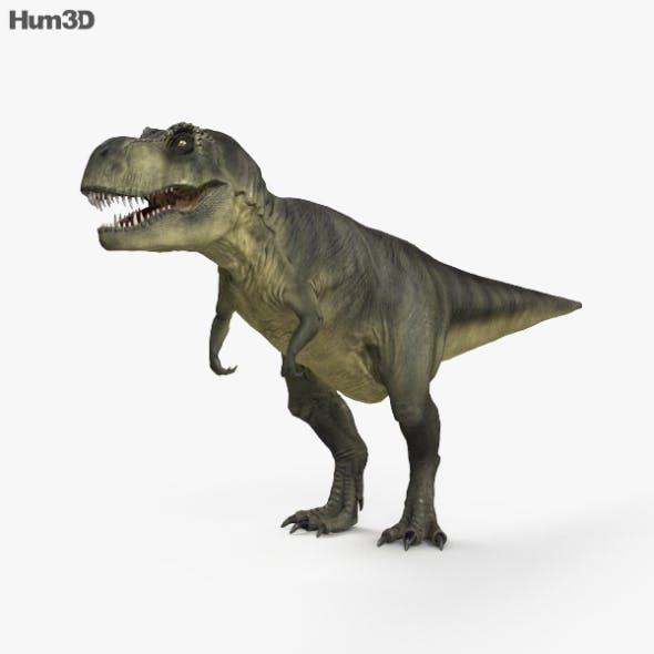Tyrannosaurus HD - 3DOcean Item for Sale