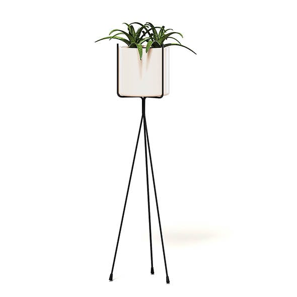 Plant on Tall Rack 3D Model - 3DOcean Item for Sale