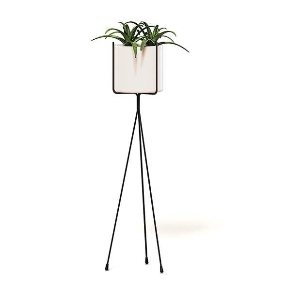 Plant on Tall Rack 3D Model