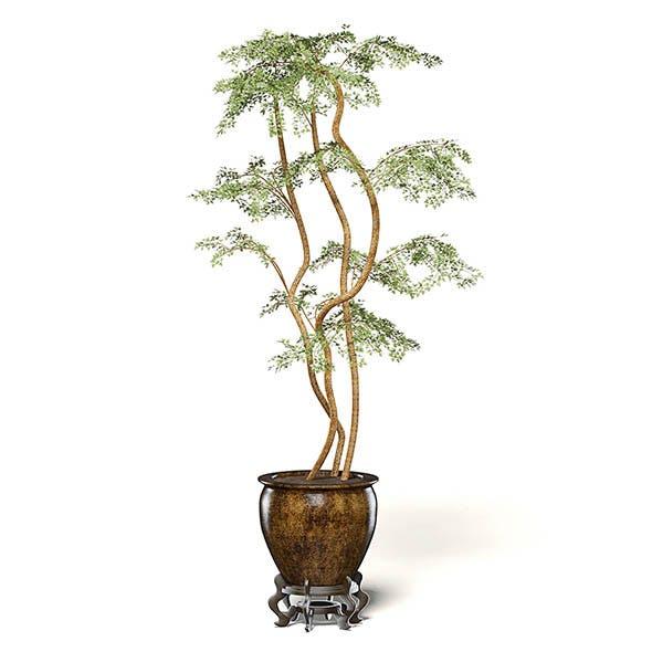 Tree in Metal Pot 3D Model - 3DOcean Item for Sale