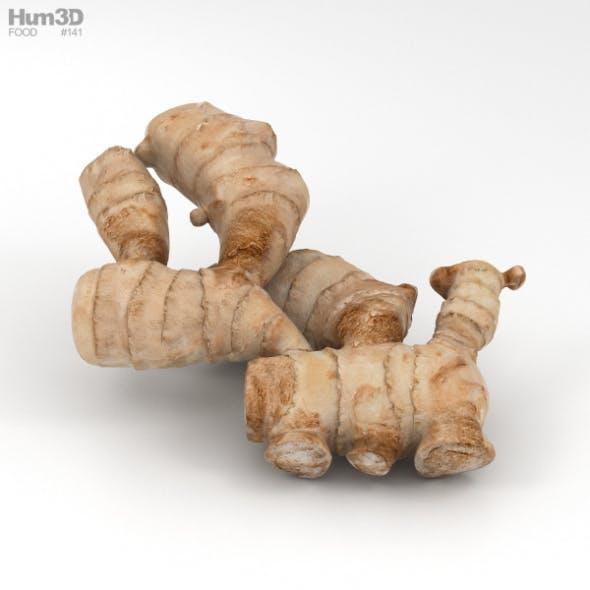 Ginger - 3DOcean Item for Sale