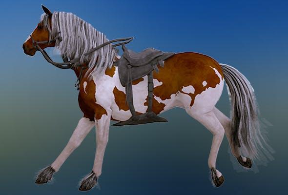 Horse New 3D model - 3DOcean Item for Sale