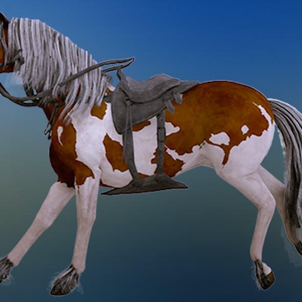 Horse New 3D model