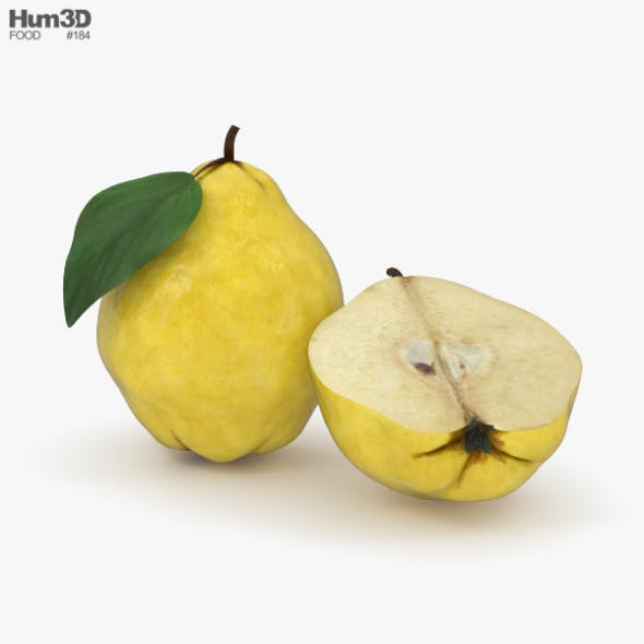 Quince - 3DOcean Item for Sale