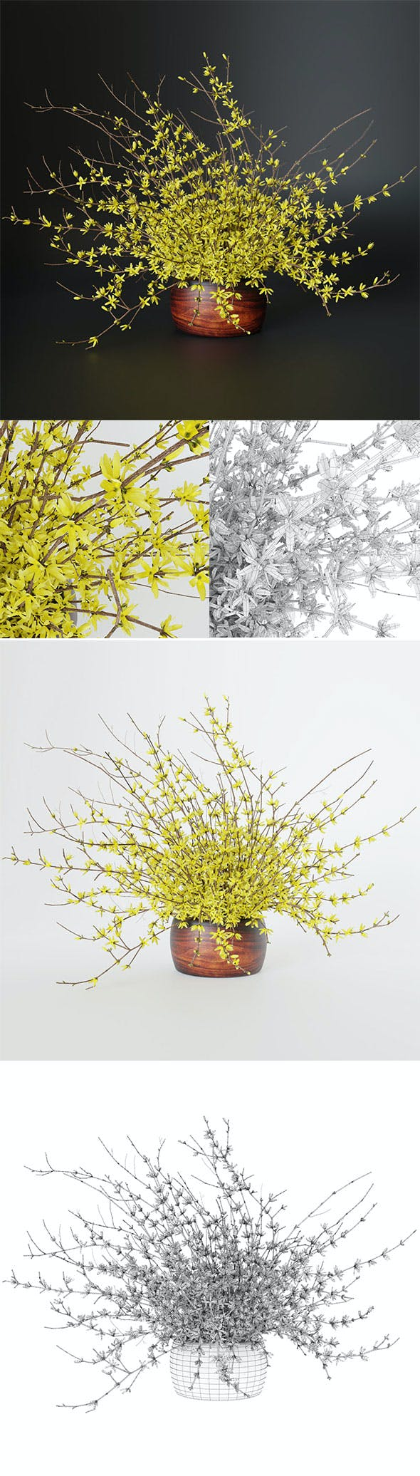 Bouquet of yellow flowers Forsythia - 3DOcean Item for Sale
