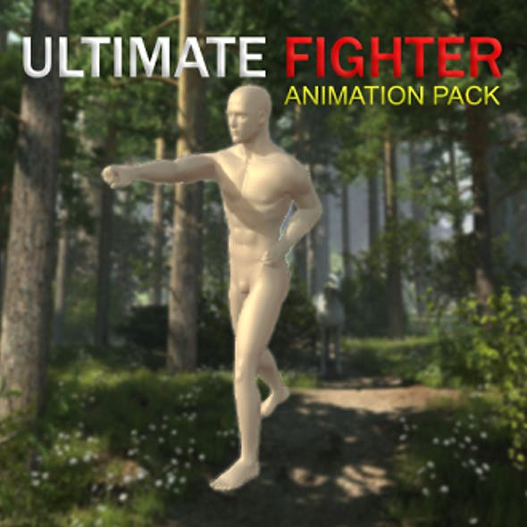 Ultimate Fighter Animation Starter Pack