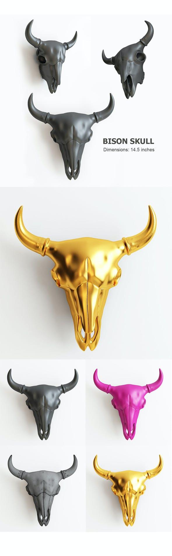 bison skull 3D print model - 3DOcean Item for Sale