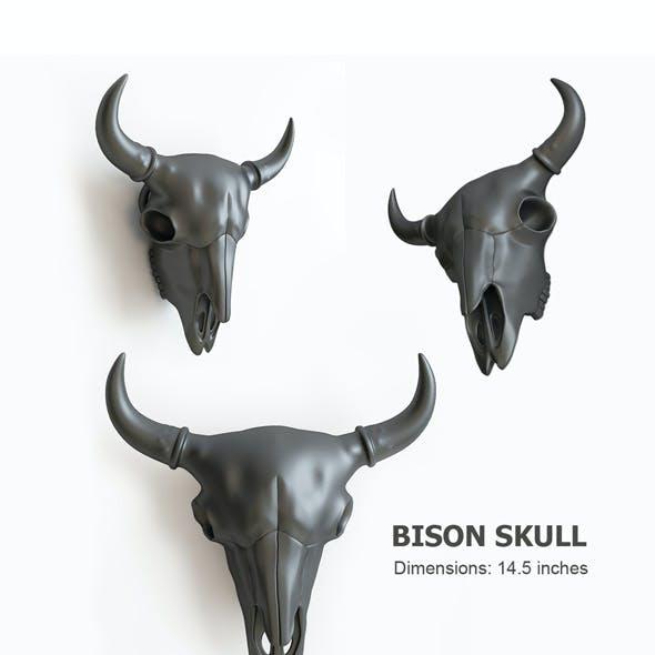 bison skull 3D print model