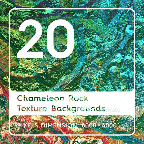 20 Chameleon Rock Texture Background