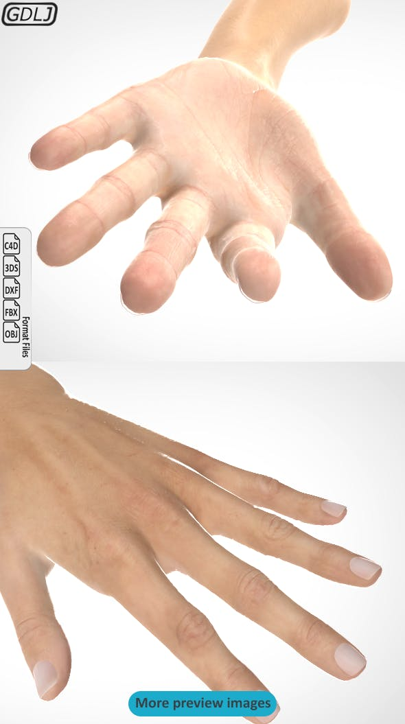Hand 3D model realistic - 3DOcean Item for Sale