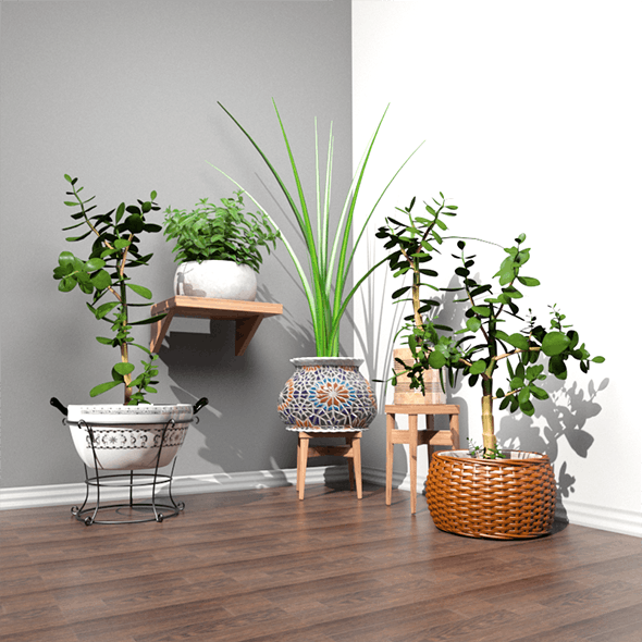 Stool and Pots with Plants - 3DOcean Item for Sale