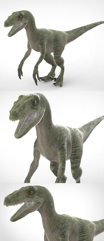 Velociraptor - 3DOcean Item for Sale