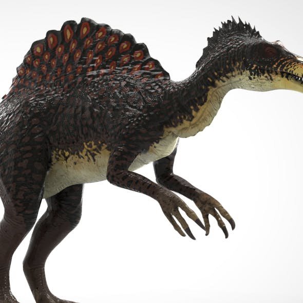 Spino - 3DOcean Item for Sale