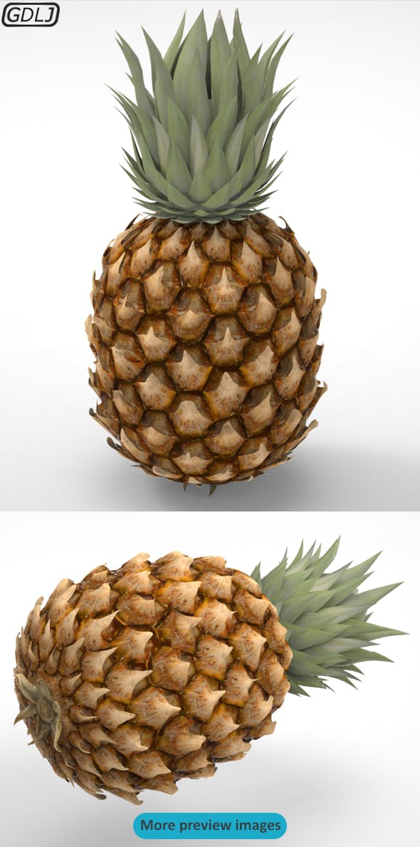 Pineapple - 3DOcean Item for Sale