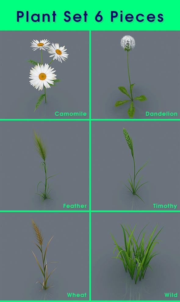 Plant Set 6 Pieces - 3DOcean Item for Sale