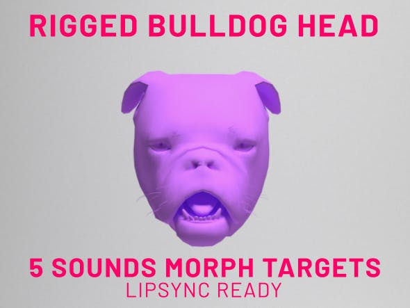 Bulldog Head Rigged Lipsync - 3DOcean Item for Sale
