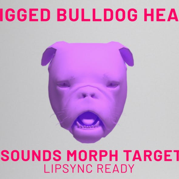 Bulldog Head Rigged Lipsync