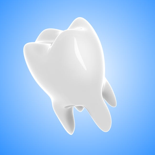 Molar (Tooth)