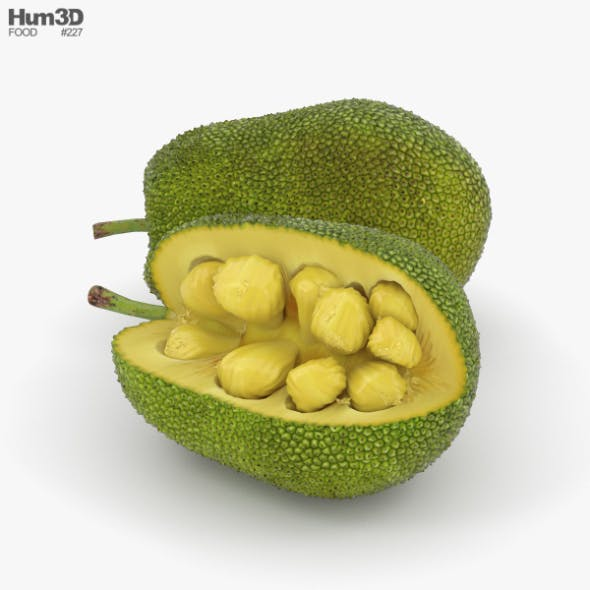Jackfruit - 3DOcean Item for Sale