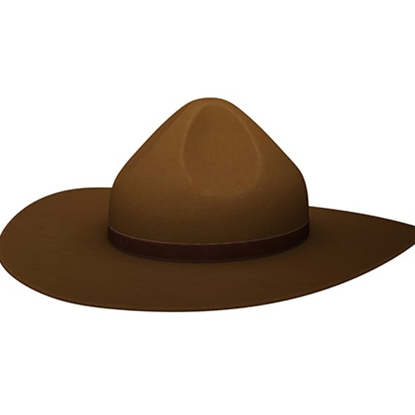 Drill Sergeant Hat