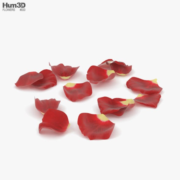 Rose Petals - 3DOcean Item for Sale
