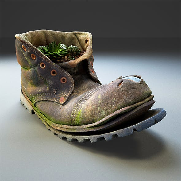 Old Boot With Plants Inside - 3D scan