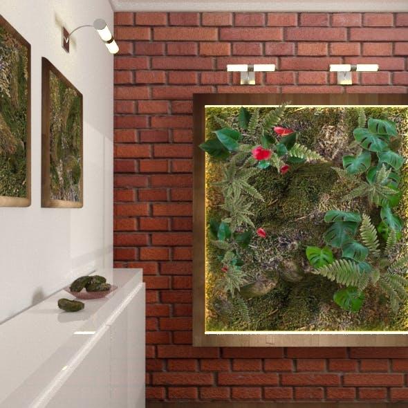 Vegetal wall. Plant
