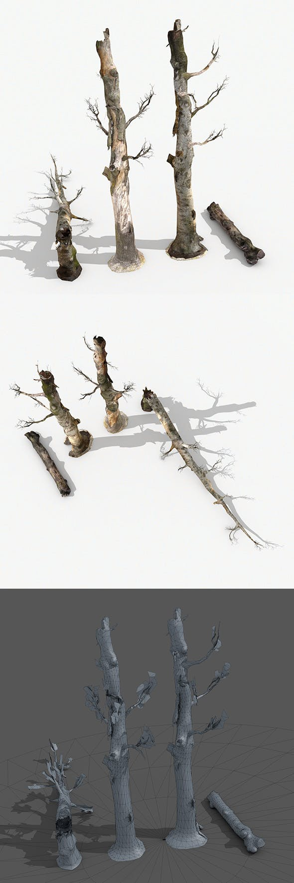 Dead Trees Collection - 3DOcean Item for Sale