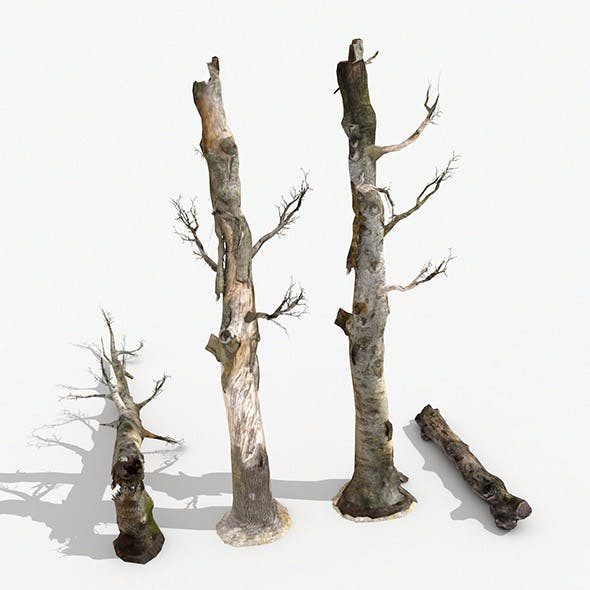 Dead Trees Collection