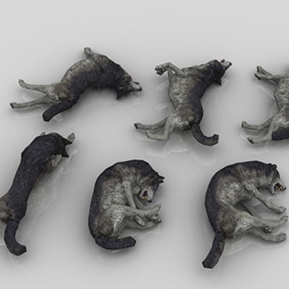 Pack of 6 Dead Wolfs