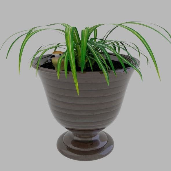 Pot plant with a bird - 3DOcean Item for Sale