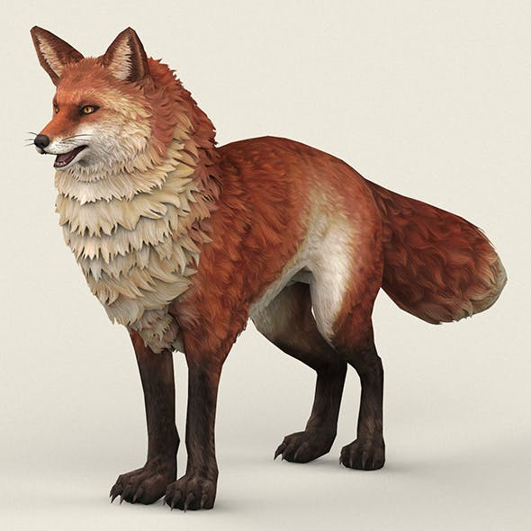 Game Ready Red Fox - 3DOcean Item for Sale
