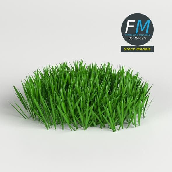 Grass Weed Module 1 - 3DOcean Item for Sale