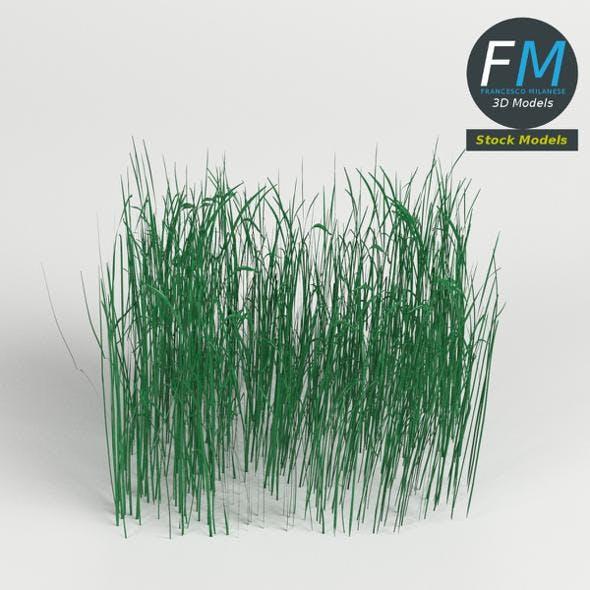High grass module