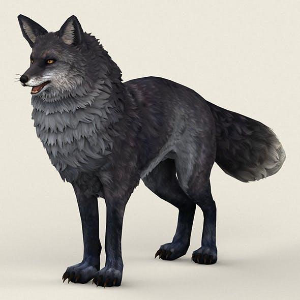 Game Ready Black Fox