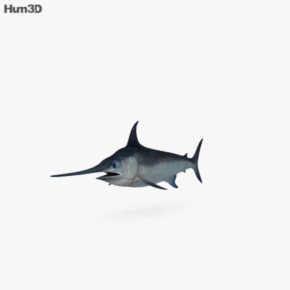 Swordfish HD - 3DOcean Item for Sale
