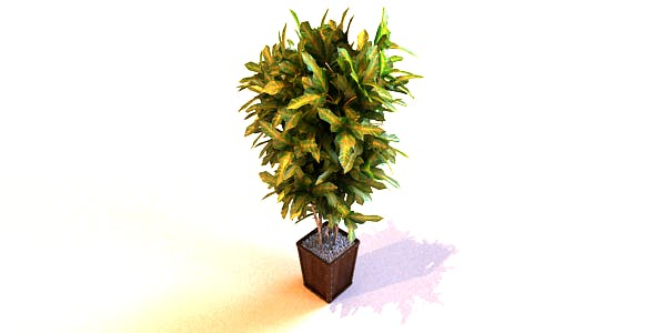 Pot Plants_028 - 3DOcean Item for Sale