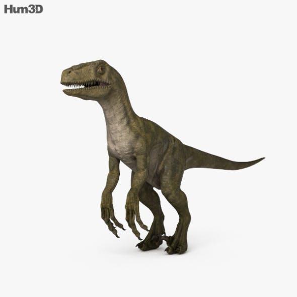 Velociraptor HD